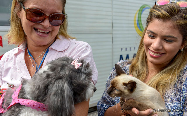 Agendamento para castração de cães e gatos começa na segunda-feira, 23