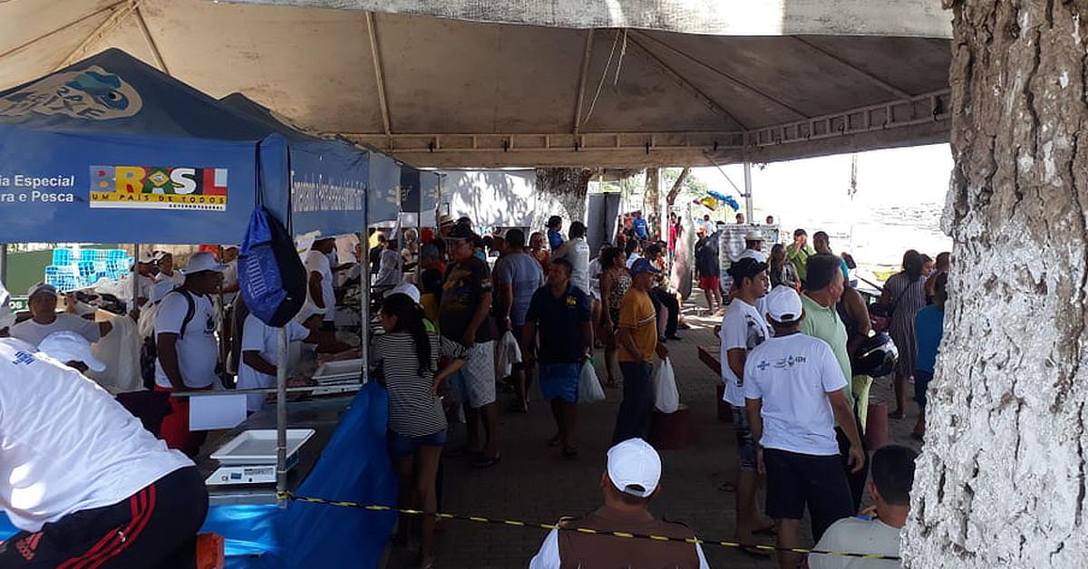Tefé promoverá a 1ª Feira do Jacaré-açu de Manejo do Estado do Amazonas