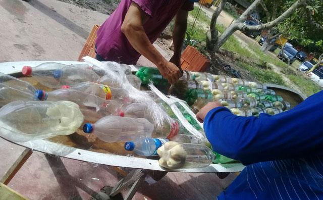 Praia Dourada inova com produção sustentável de pranchas