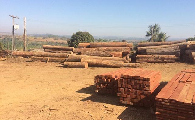 Ipaam inspeciona indústrias madeireiras do Estado