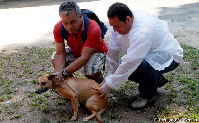 37ª Campanha de Vacinação Antirrábica na área urbana de Manaus
