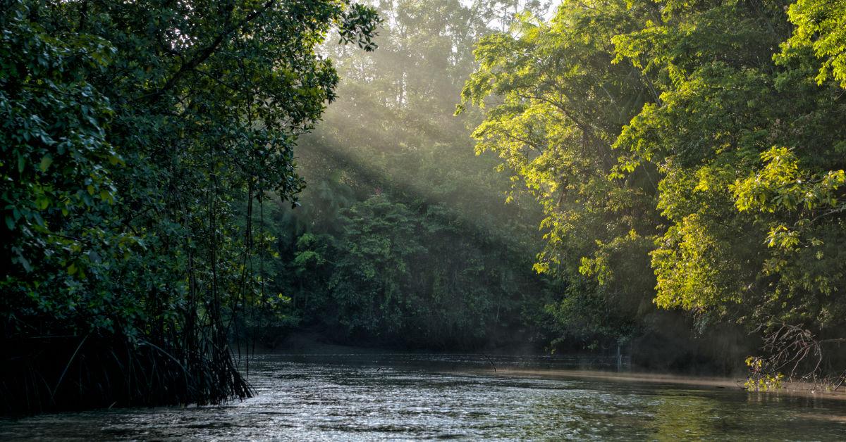 Exposição itinerante Luz: do fogo ao átomo chega a Manaus