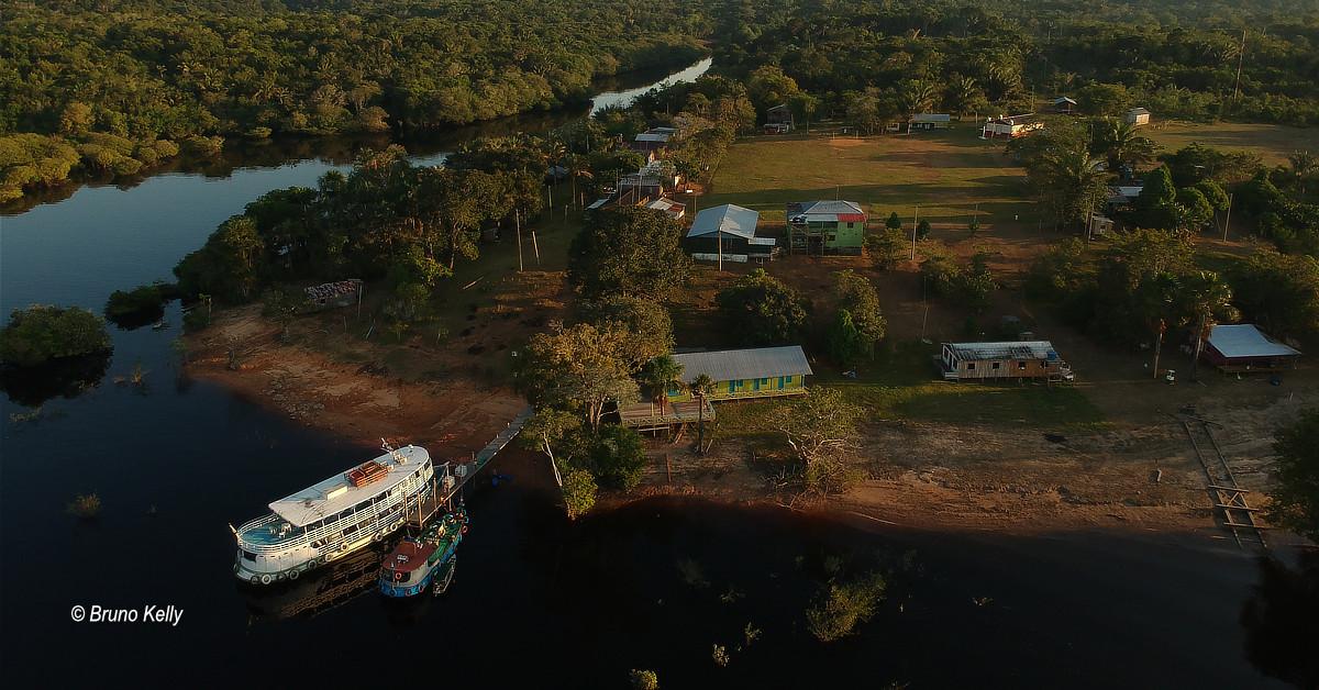 Ações e eventos virtuais celebram o Dia da Amazônia