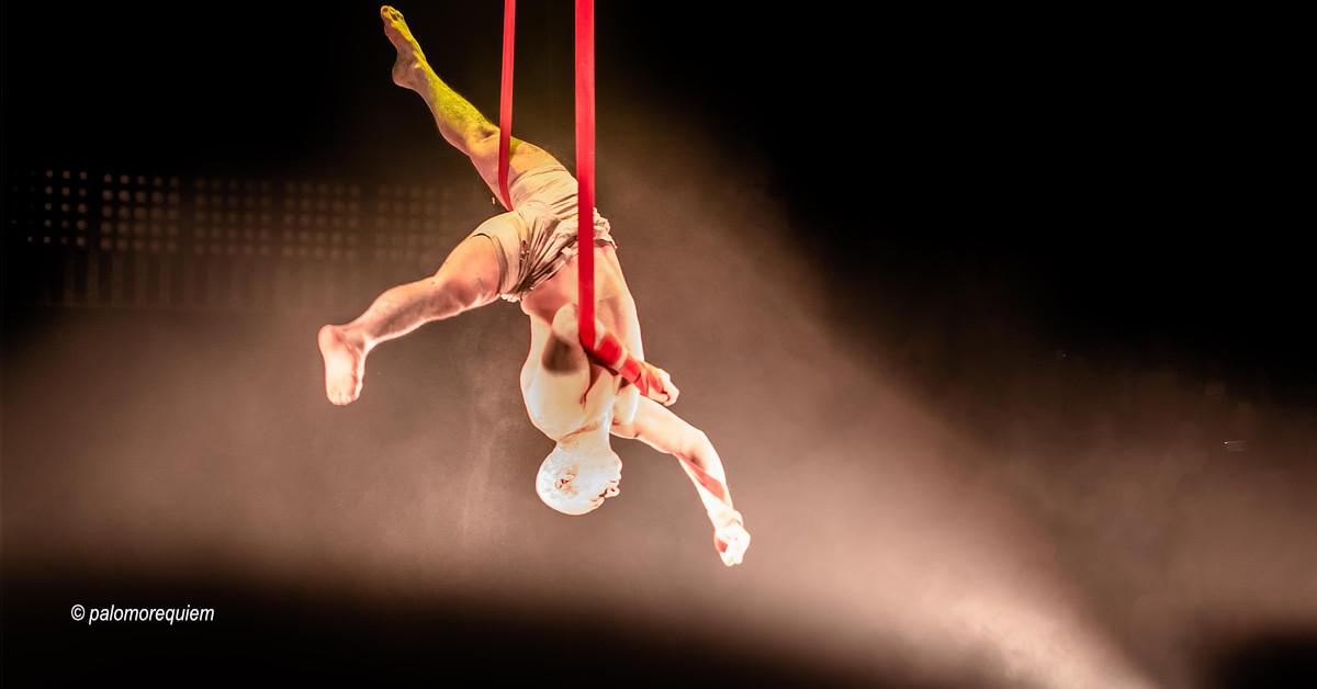 Festival Mova-se apresenta espetáculos selecionados para a 11ª. Edição