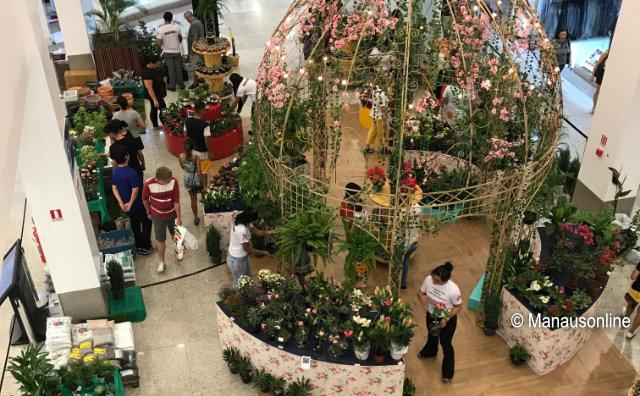 Festival de Flores de Holambra terá workshops sobre cultivo e cuidados de plantas