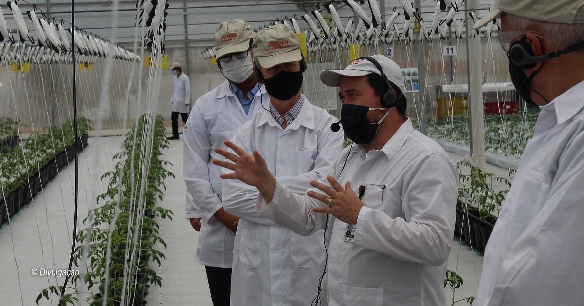 Empresa Denso inova e investe em agricultura no PIM