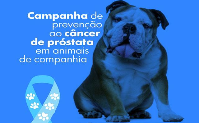 Novembro Azul sensibiliza sobre câncer de próstata
